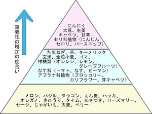 ピラミッド.png
